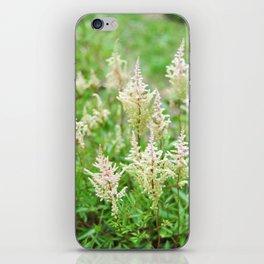 Deer Isle Series: Run Through the Meadow iPhone Skin