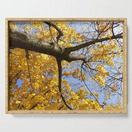 autumn season Serving Tray