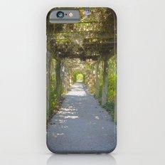 Perfect pathway Slim Case iPhone 6s