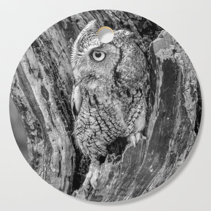 Echo the Screech Owl by Teresa Thompson Cutting Board