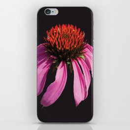 Coneflower 2 Dark iPhone Skin