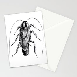 Cockroach Pen Art Drawing Stationery Cards