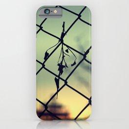 Tree silhouette iPhone Case