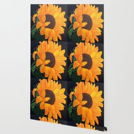 Saving Summer Wallpaper