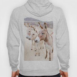 Three Donkeys in Baja, Mexico Hoody