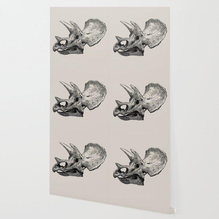 Dinosaur Skeleton Ink Pen Illustration Triceratops Wallpaper
