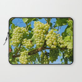 Delicious growing green grapes bunch farming on a beautiful blue summer sky background Laptop Sleeve