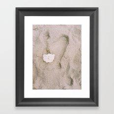 Rose in the Sand Framed Art Print