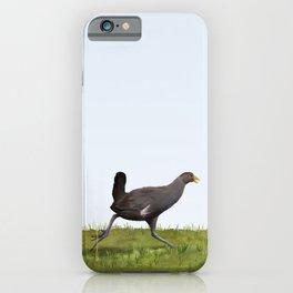 Native Hen (Tribonyx mortierii) iPhone Case