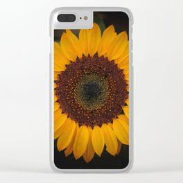 Sunflower yellow green Clear iPhone Case