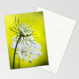 Lace Wildflower Stationery Cards