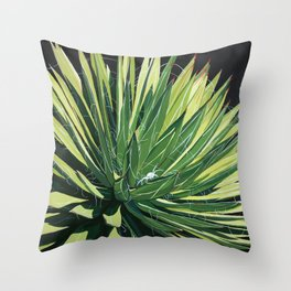 Yucca with spider Throw Pillow