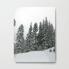 Tahoe 0380 Metal Print