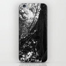 Fundation No.1 iPhone & iPod Skin