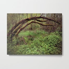 Arch of Jericho Metal Print