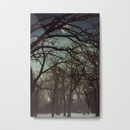 B4 Night falls Metal Print
