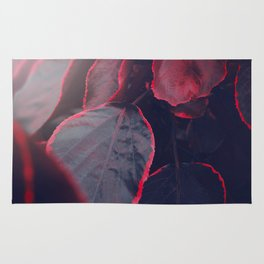 Sensual Red & Dark Purple Leaves Abstract Photography Patterns In Nature Rug