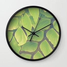 Fern Abstract Wall Clock