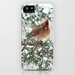 Are You My Mama? iPhone Case