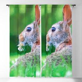 Cute Fluffy Bunny Blackout Curtain