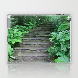 The Forgotten Journey Laptop & iPad Skin