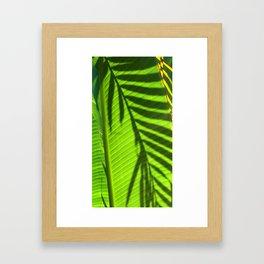 Leaves - Maui Framed Art Print