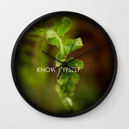 Know Thyself Wall Clock