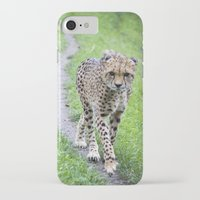 jaguar iPhone & iPod Cases featuring Jaguar by Veronika