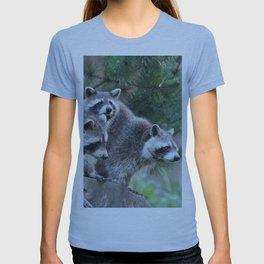 Raccoon_001_by_JAMFoto T-shirt