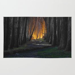 Haunted Forest and Andrew Goldsworthy Sculpture Rug