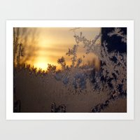 Frost Tracery 3 Art Print