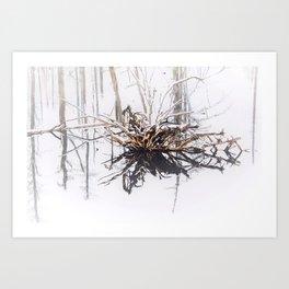 Wood Snow Swamp Art Print