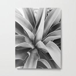 agave Metal Print