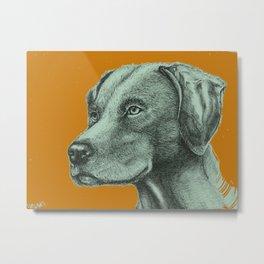 Critter Sketch Metal Print