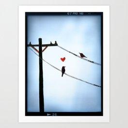 Bird In Love Art Print