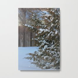 Winter Wonderland in Kansas Metal Print