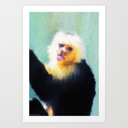 Spunky Little Monkey Art Print