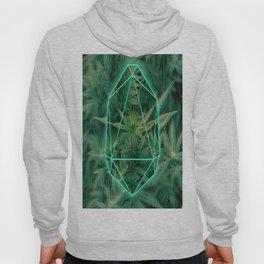 Trippy 3D geometric weed Hoody
