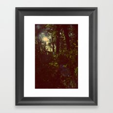 Tom Sawyer Framed Art Print