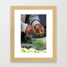 Peas Framed Art Print