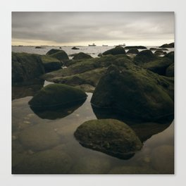 Rocky Shore and the Sea 02 Canvas Print