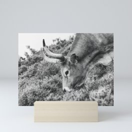 Portrait of a beautiful female cow Mini Art Print