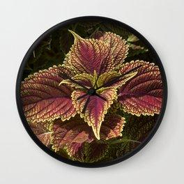Green Coleus Plant Wall Clock