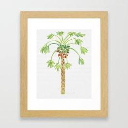 Papaya Tree Watercolor Framed Art Print