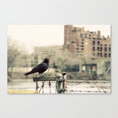 The Watcher Canvas Print