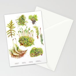 Moss - Botanical Stationery Cards
