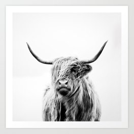 portrait of a highland cow Kunstdrucke