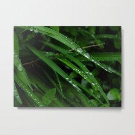 deep green dew III Metal Print