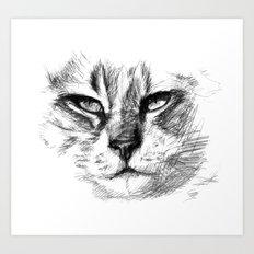 Cat sk125 Art Print