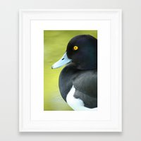 duck Framed Art Prints featuring Duck by BlackNYX